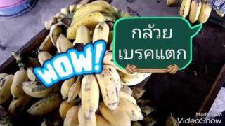 อาชีพเสริม กล้วยเบรคแตก ทำขายได้ หารายได้เสริมระหว่างทำงานประจำ